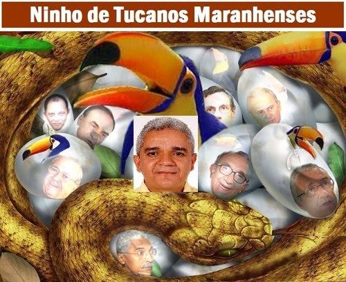 CHARGE ELETRÔNICA: UM CONHECIDO NO NINHO