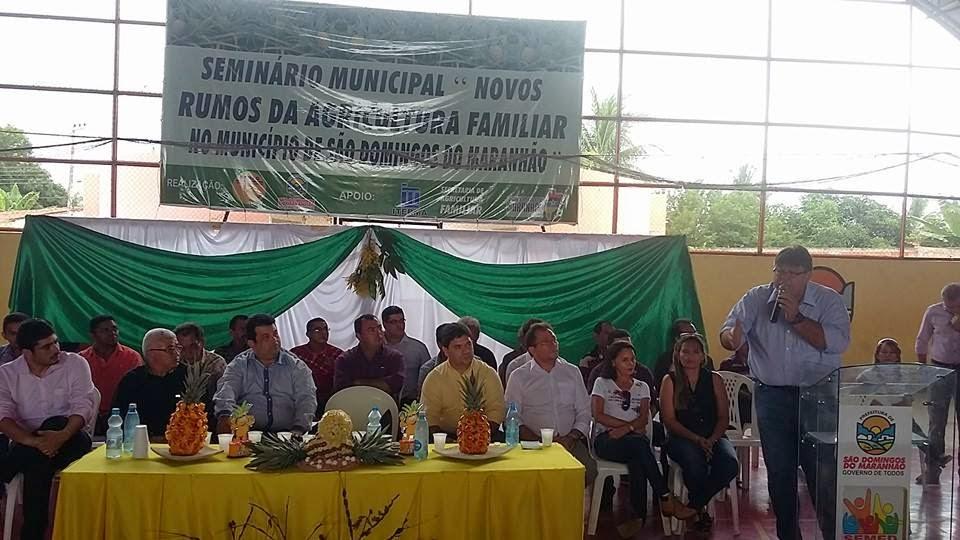 abacaxi-sao-domingos-015