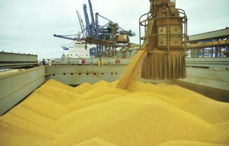 Lei de Dino que cria taxa sobre soja e milho no MA será questionada no STF